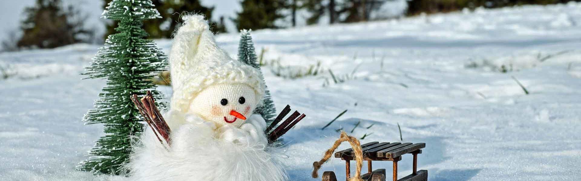 snow-man-2955780